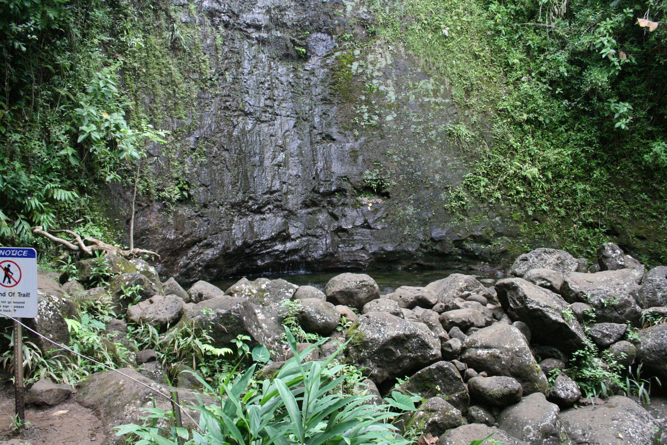 hawaii-tag8041