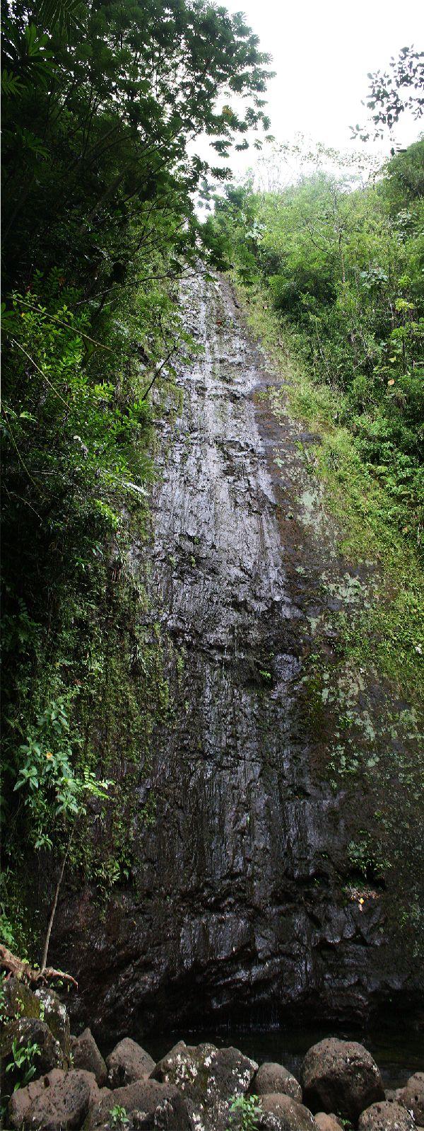 hawaii-tag8049